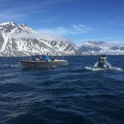 C-Explorer 3 diving expedition in Greenland